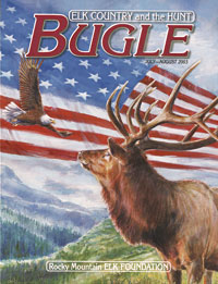 Rocky Mountain Stars and Stripes patriotic magazine cover illustration