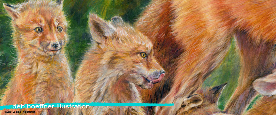 deb hoeffner wildlife watercolor painting of red fox mother and kits