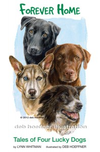 Forever Home: Tales of Four Lucky Dogs Children's Book Illustrators