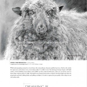 award-winning sheep drawing featured in Strokes of genius book
