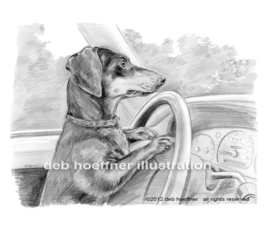 dog driving car book illustration