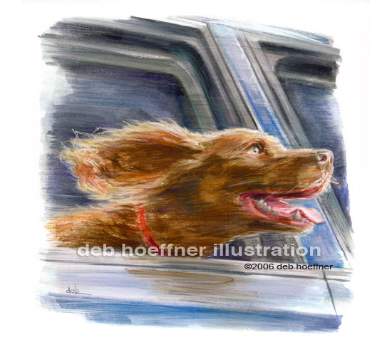 Dog with head out of car window illustration for book Dog's Guide to Life