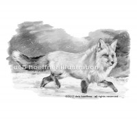 black and white book illustration fox in snow drawing