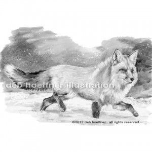 b&w book illustration fox in snow