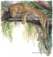 leopard painting - big cat illustration for stock illustrations images