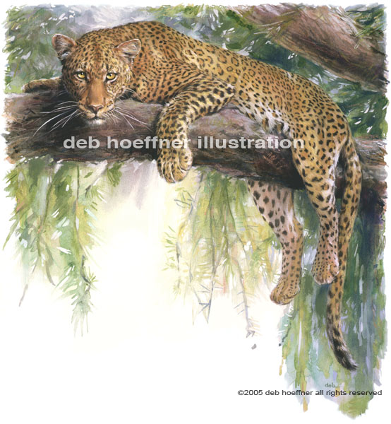 leopard painting - big cat illustration for stock usage