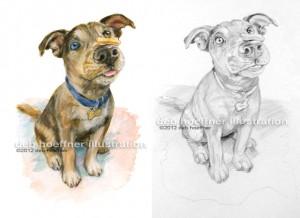 puppy obedience school illustration