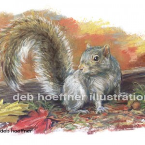 Yankee Magazine magazine editorial illustration of Grey Squirrel, autumn leaves, squirrel