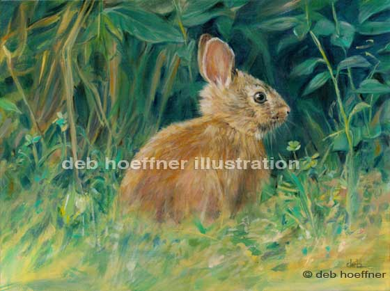realistic wildlife art by Bucks County artist deb hoeffner
