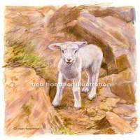 lamb stock art image