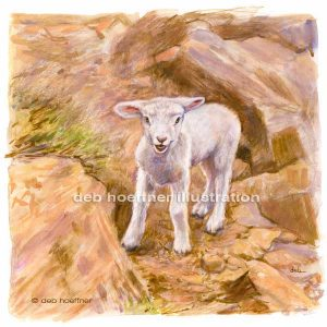 lost lamb stock art image