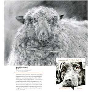 best animal art book